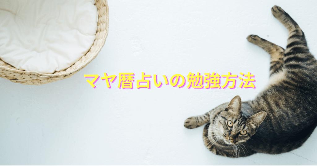 【必見!!】マヤ暦占いを勉強するメリットと勉強法